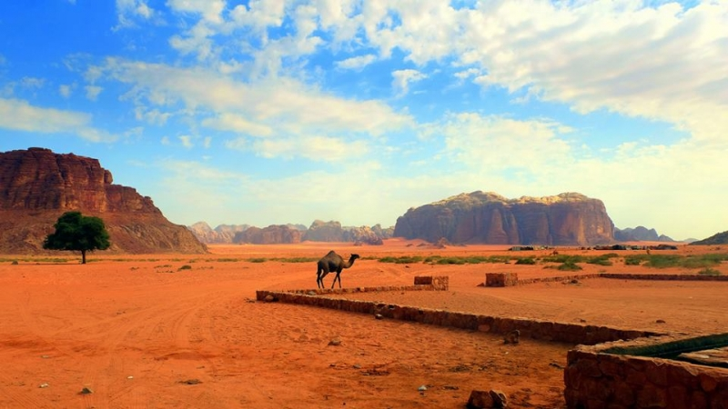 Wadi Rum Desert Safari