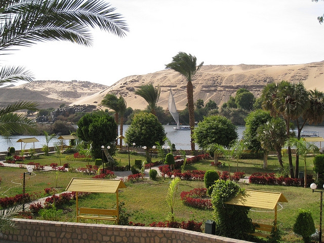 The Botanical Garden in Aswan