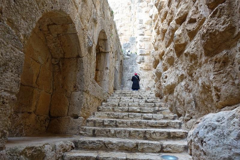 Jerash and Ajloun Tour