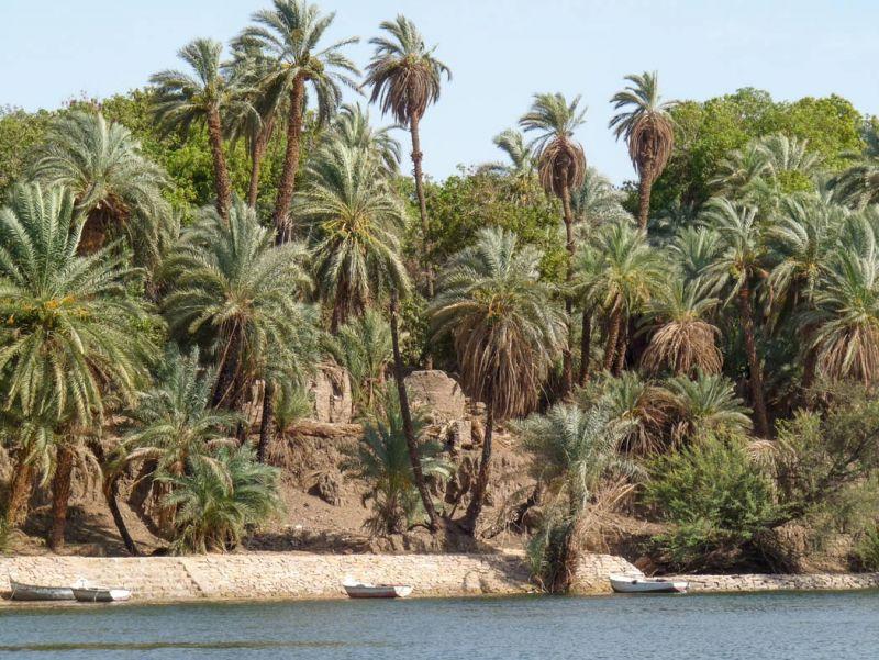 Isola Elefantina