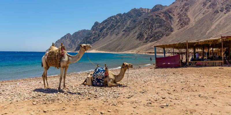 Top places to visit in Egypt during Christmas and New Year
