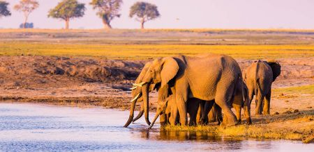 A Guide to the Best Attractions in Africa