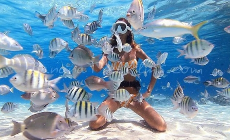Snorkeling at Ras Mohammed National Park, Red Sea Egypt