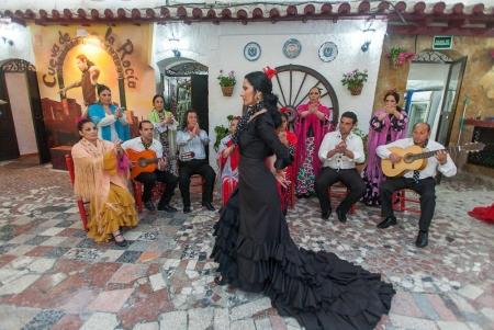 Zambra flamenco show, Granada
