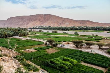 Wadi Danak (Fida) of Oman