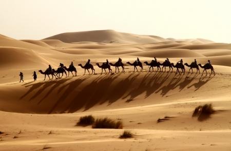 ラクダのキャラバン、ザゴラ砂漠