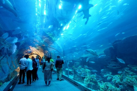 Alte und Moderne Dubai Tour