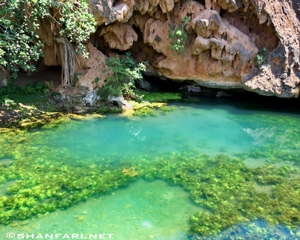 Springs in Dhofar of Oman