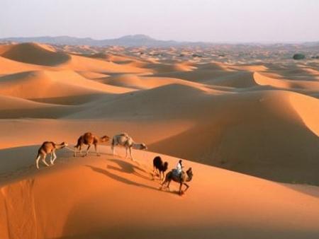 Charming Morocco Desert