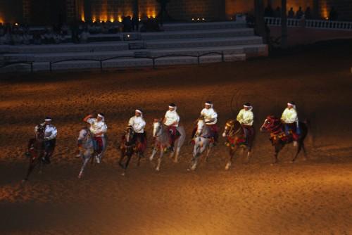 Horses Show