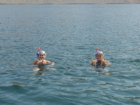 Snorkeling in Musandam
