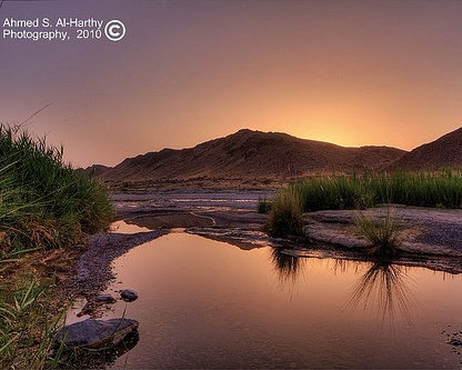 Wadi Al Khoudh of Oman