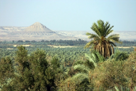 Oasi di Bahariya, Deserto Egiziano