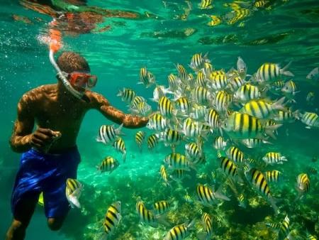 Snorkeling in Taba