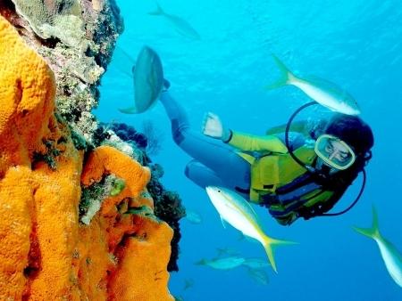 Immersioni a Hurghada