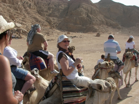Camel ride at Sharm