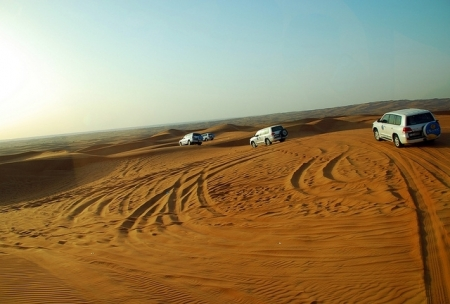 Private Desert Safari with BBQ & Falcon Experience