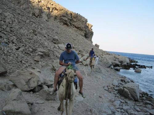 Camel Riding on The Beach