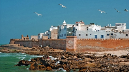 The Beauty of Essaouira