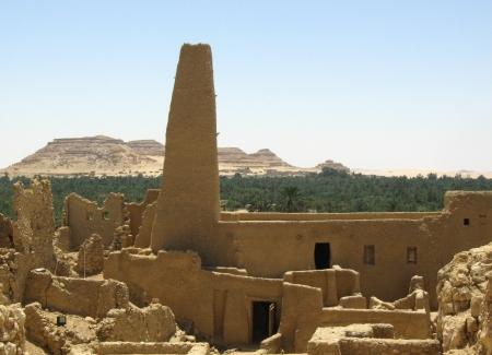 L'Oracolo di Amon, Oasi di Siwa