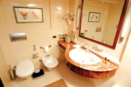 Accessible Nile Cruise Bathroom