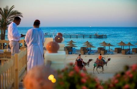 Camel Ride on The Beach