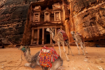 The Red Rose City Petra