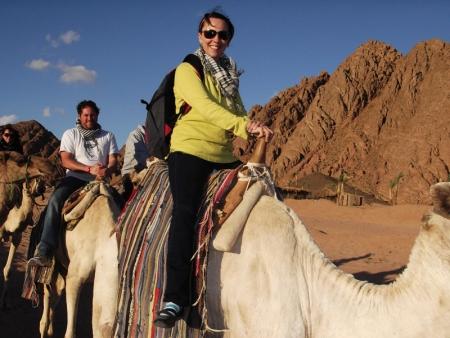 Paseo por camello, Sharm El Sheikh