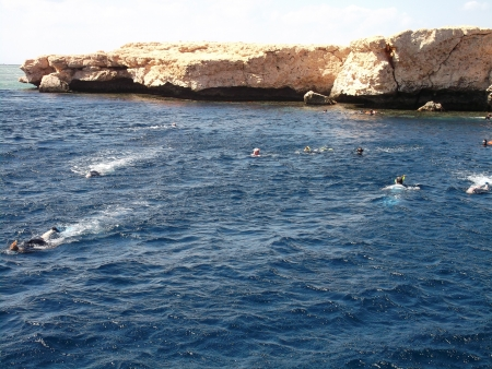 Snorkel in Ras Mohamed