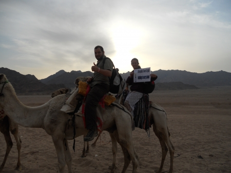 Camel Ride in Sinai