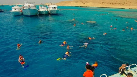 Snorkeling Adventure in Red Sea