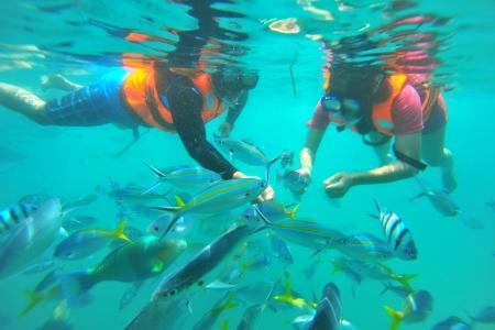 Snorkeling in Bodrum