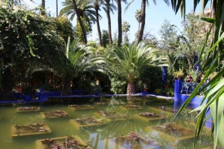 Marrakech-Jardim-Majorelle