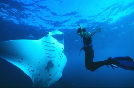 Snorkeling, Turkey