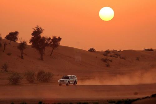 Desert Safari from El Gouna