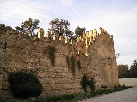 フェズ エル ジェディドの壁