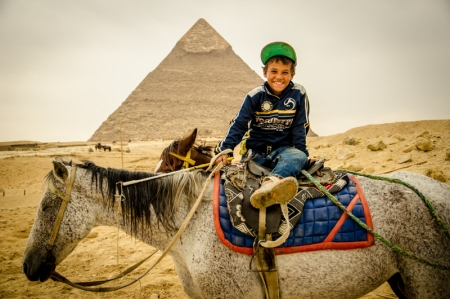 Horse around Giza Pyramids