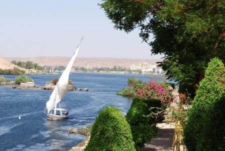 Il Giardino Botanico di Aswan