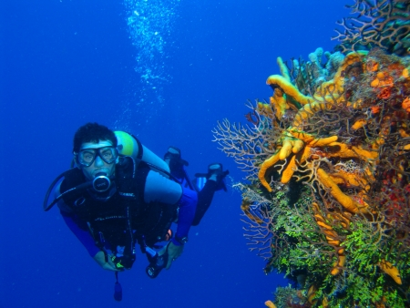 Scuba Diving in Hurghada Red Sea