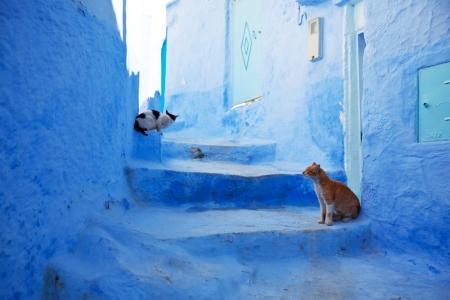 La Città Blu