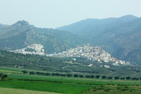 The Bou Inania Medersa