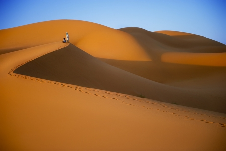 Gold Desert in Morocco