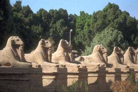 The Sphinxes Avenue, Luxor