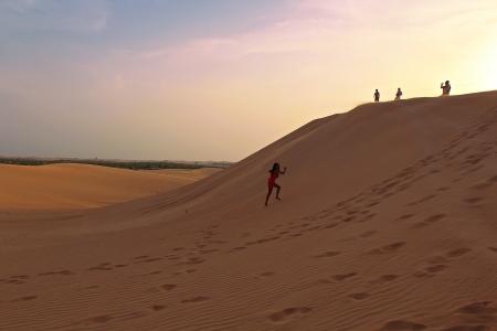 Liwa Desert Safari from Abu Dhabi port