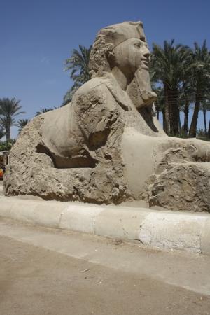 Escursione Dahshur, Saqqara e Menfi