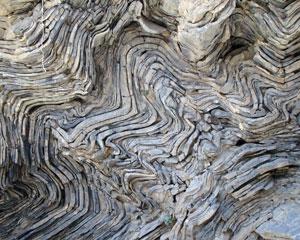 Mini folds in Oman