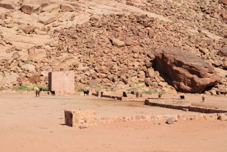 Lawrence's Spring in Wadi Rum