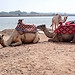 Immouzer Ausflug ab Agadir