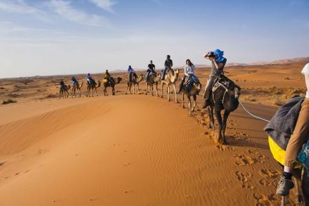 Camel Trekking, Merzouga