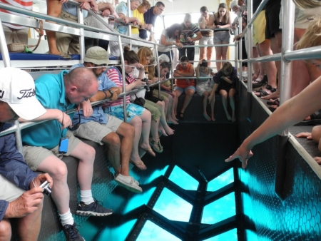 Glass Boat Experience